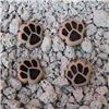 Order  Button - Mini Paw Prints