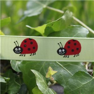 Animal Cuties - Ladybird/Lime Juice
