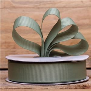 Basics 2 Go Grosgrain Ribbon - 22mm Spring Moss
