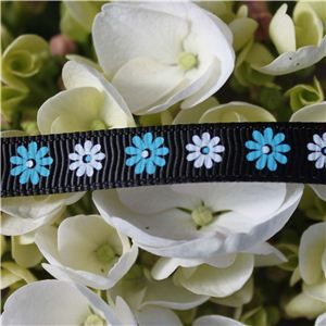 Flower Ribbon - Gerbera Blue/White on Black