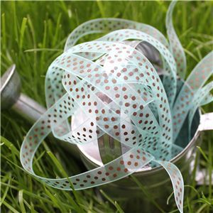 Organza Swiss Dot Ribbon - Aqua/Brown