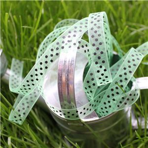 Organza Swiss Dot Ribbon - Mint/Black
