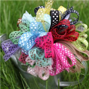 organza sheer swis dot ribbon