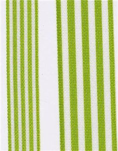 Fresh Stripe Ribbon - Meadow