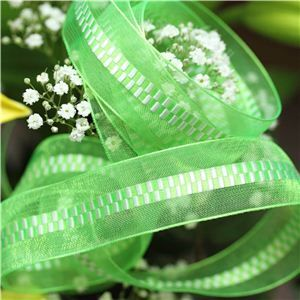 21mm Sheer Ribbon - Zipper Lime